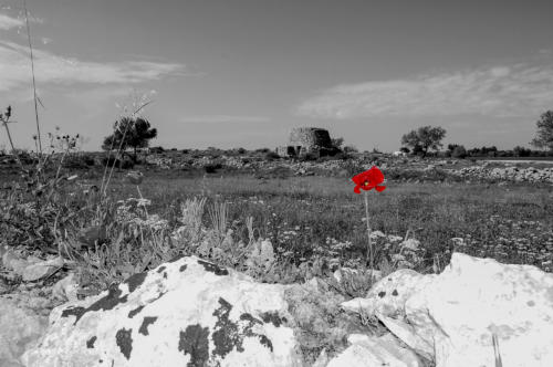 1578327302 paesaggio-rurale